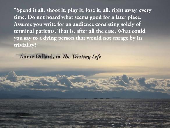 Quote from Annie Dillard